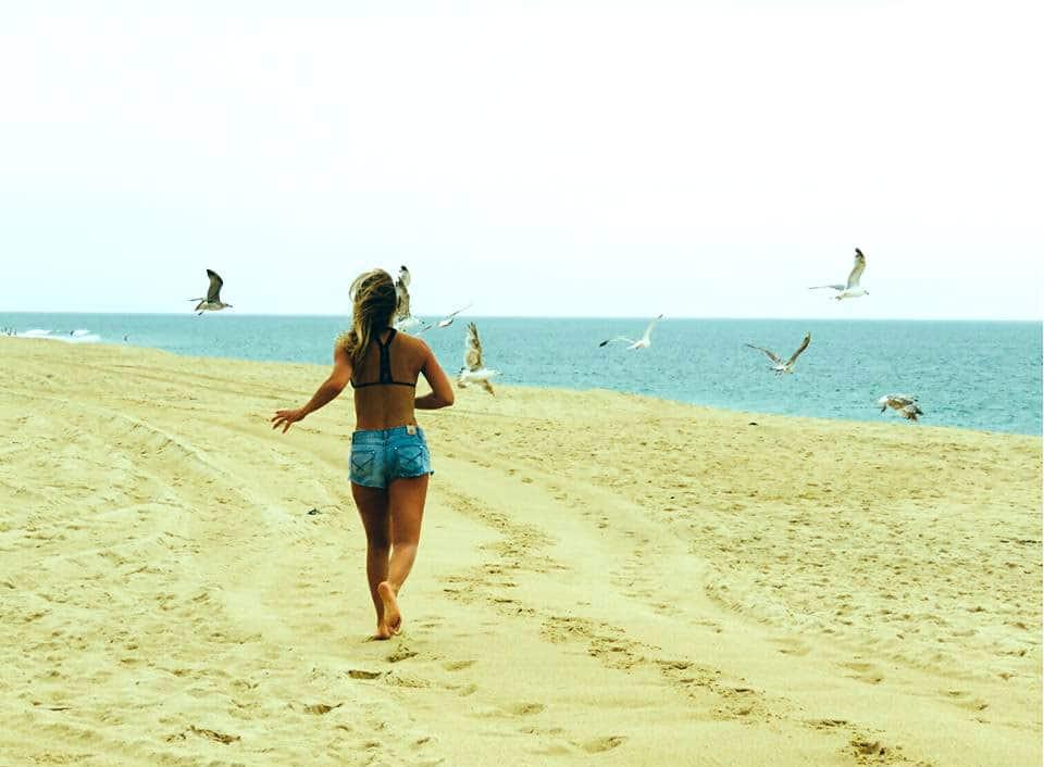 seignosse-landes-ocean-plage-mouettes